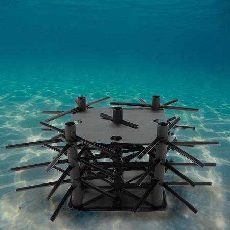 Mossback Reef Kit